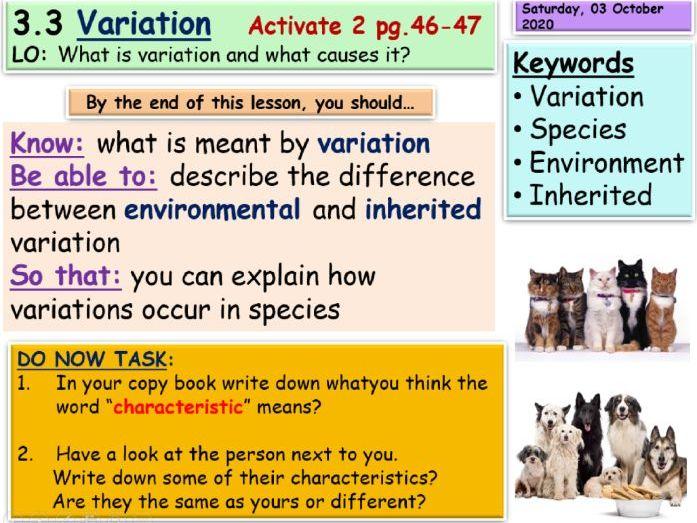 Variation KS3 Science
