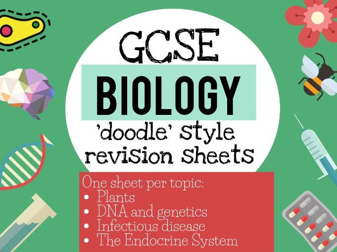 NEW Biology doodle style revision notes