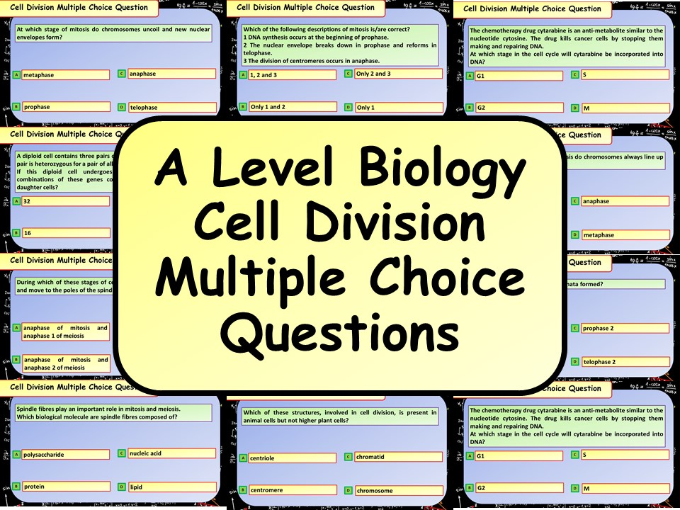 FREE A Level Biology Cell Division Multiple Choice Questions