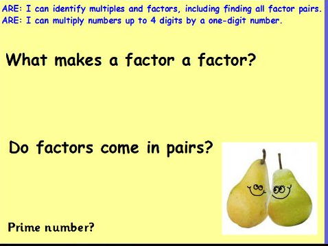 Factors and 4D x 2D Multiplication, with Steps to Success, Lesson Pack