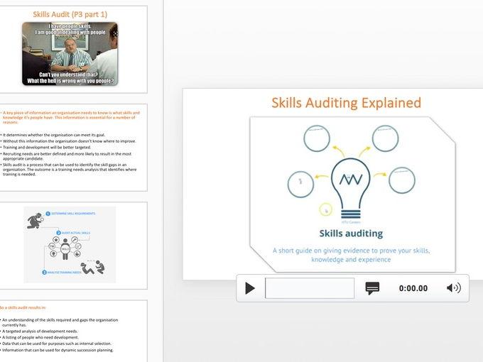 Skills Audit