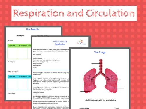 Respiration and Circulation - a fun introduction, complete lesson