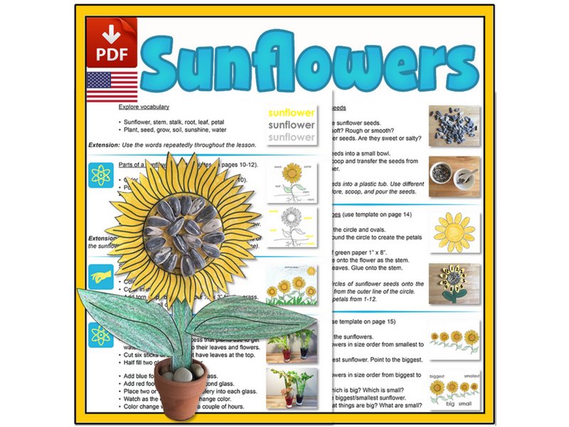 Sunflower Mini-lesson - US Version (Letter)