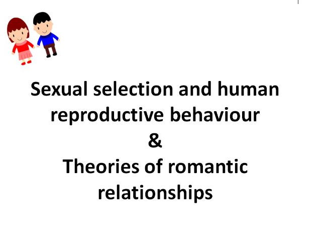 AQA psychology Relationships evolutionary explanations and Theories of romantic relationships