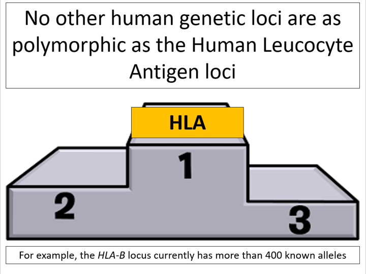 Genetic biodiversity (OCR A-level Biology)