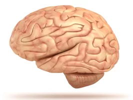 Paper one Cognition & Behaviour mind maps