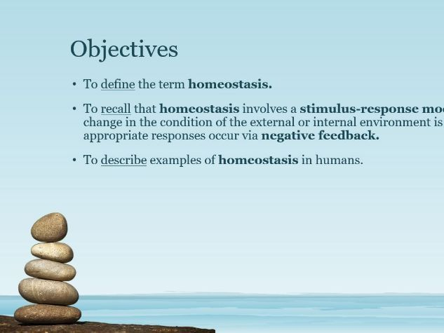 PowerPoint: Introduction to Homeostasis
