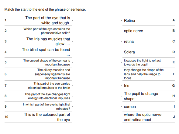 The Eye Starter or Plenary - Matching Activity with answer key