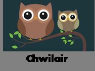 Chwilair - Creaduriaid y nos
