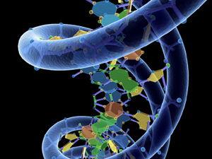 AQA GCSE Biology - Genetics Lesson Bundle (4.6.1) (B13)