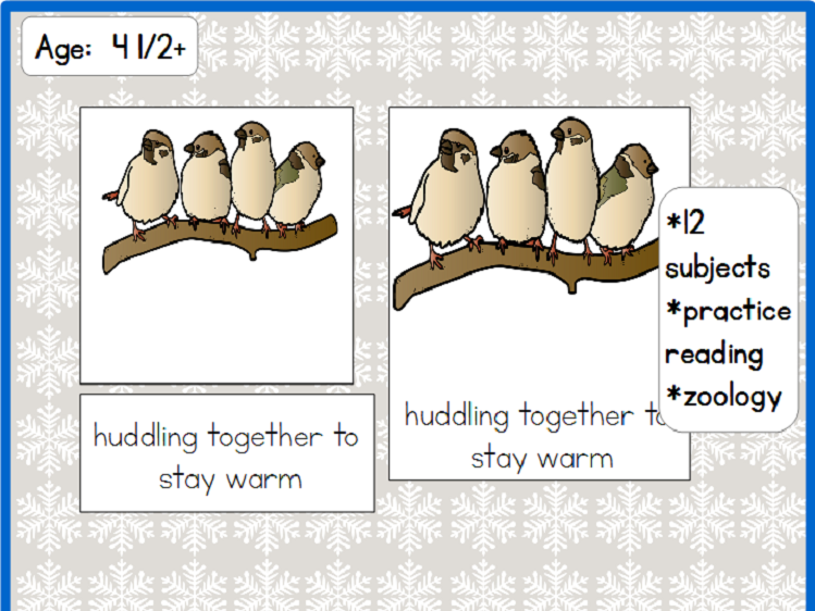 Birds in Winter - 3 Part Cards Montessori Reading Classification