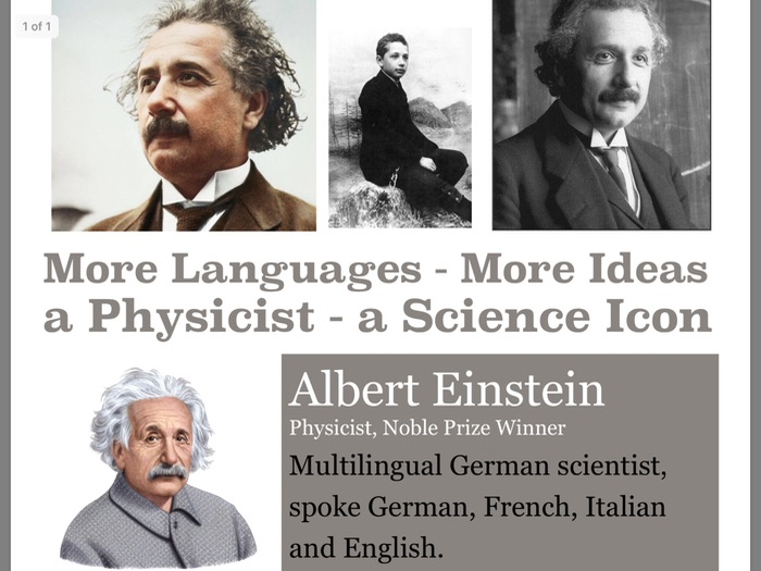 MFL Poster 8 - Albert Einstein