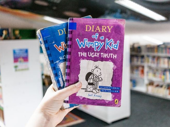 Diary of  a Wimpy Kid -Full novel study with quiz
