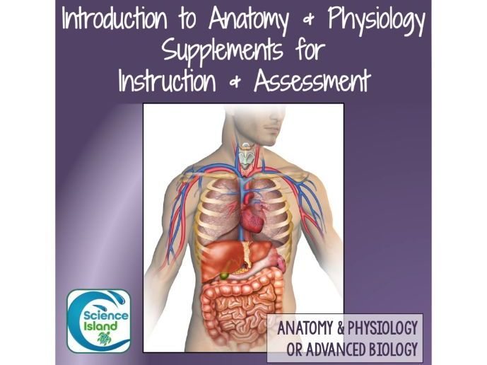 Introduction To Anatomy And Physiology Supplements For Instruction