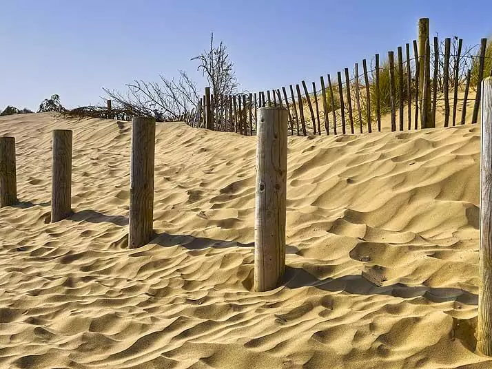 Sand Dune Protection