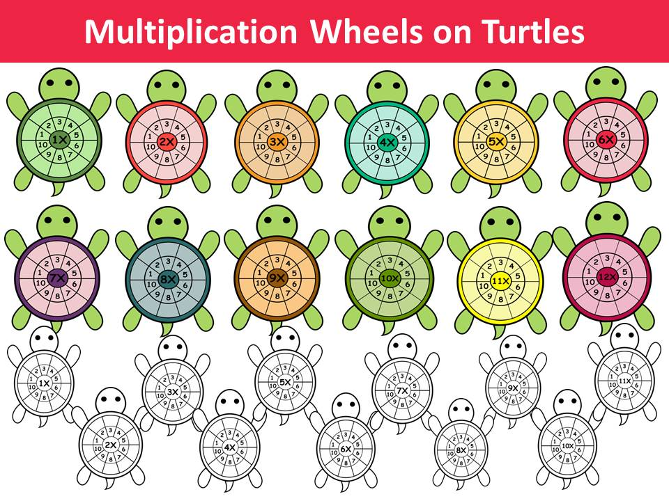 Multiplication wheels on turtles