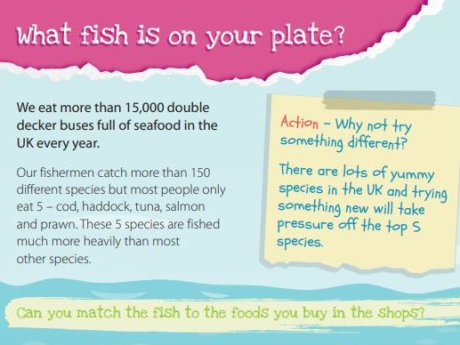 What Fish is on Your Plate? UK