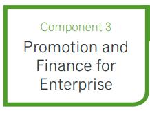 BTEC Tech Award in Enterprise - Component 3 Promotion and Finance for Enterprise
