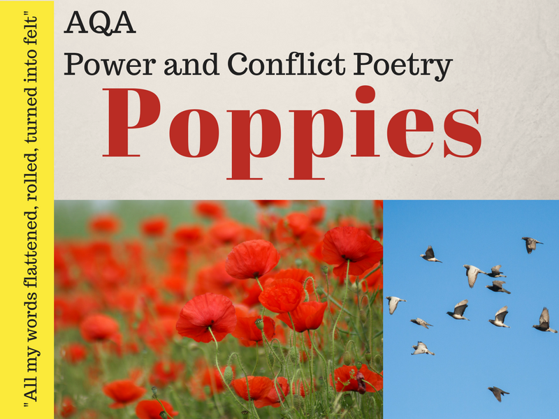 Poppies - Power and Conflict Poetry - War Poems - Lessons 12 & 13