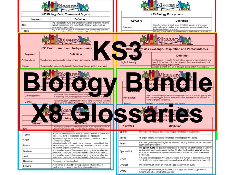KS3 Science Glossaries Biology x8 (Blank & Completed)