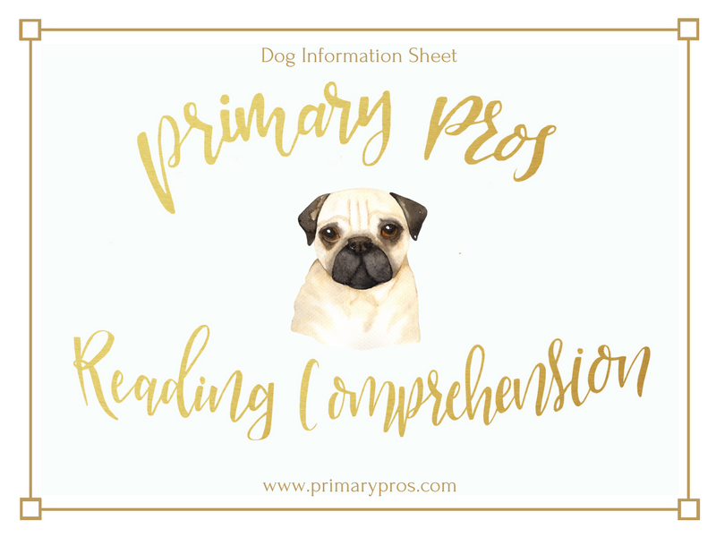 Year 3 & 4 Reading Comprehension - Dog Information Sheet