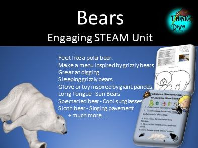 Project Based Learning: Bears - STEAM, Biomimicry, KS1, NGSS