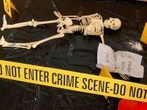 CSI Forensic Investigation (Full Lesson)