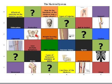 GCSE P.E. Skeletal System Learning Grid