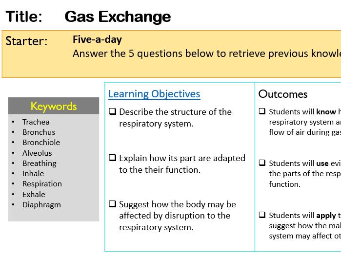 KS3 Gas Exchange