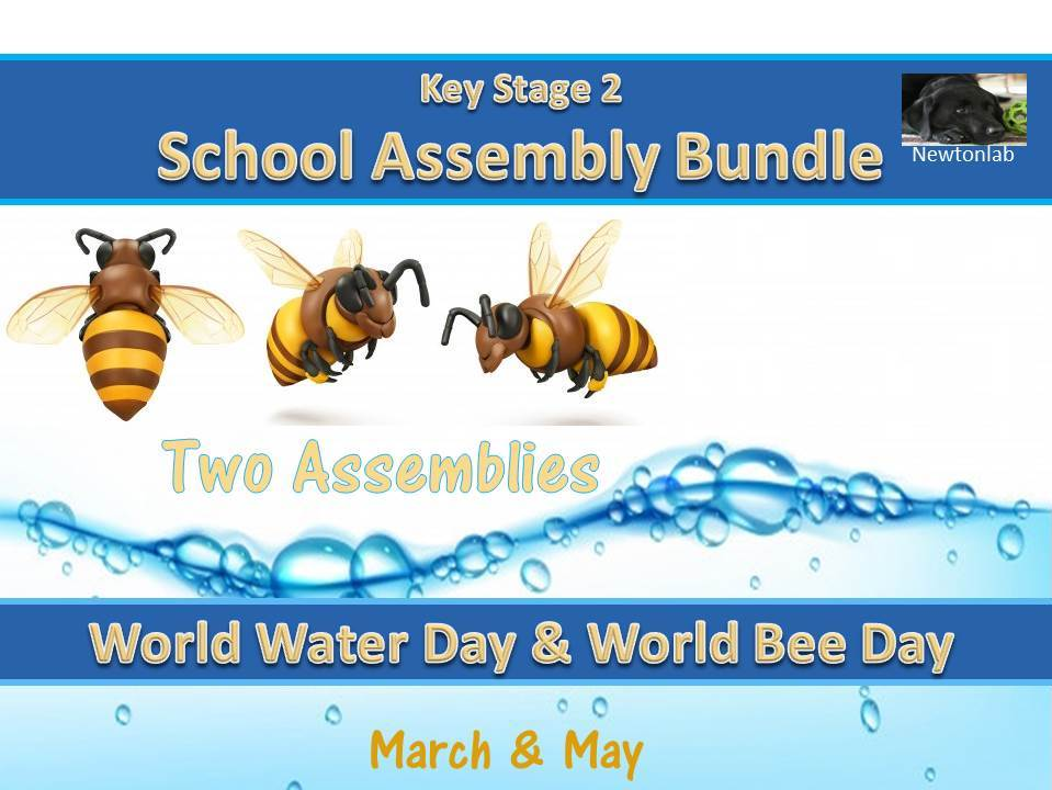 World Water Day & World Bee Day Assembly Bundle - Key Stage 2