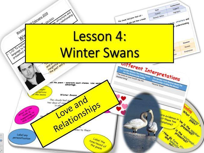 L4 - Winter Swans