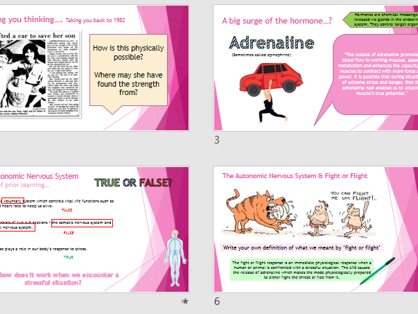 ANS and Fight or Flight (GCSE AQA Psychology 9-1)
