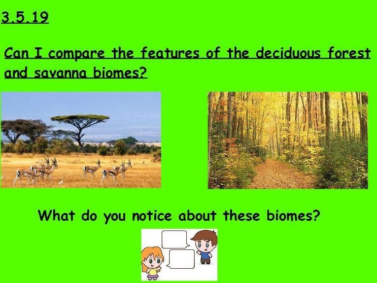 Year 5 Biome Comparison Lesson