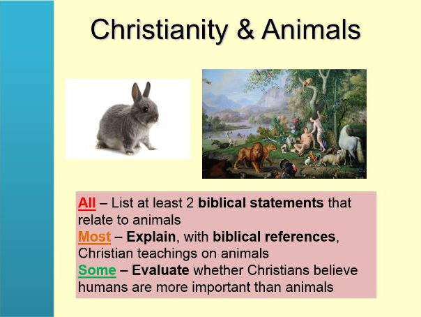 Christianity and animals