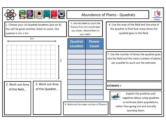 Sampling Plants (Quadrats) CLF Lesson & Resources - Lesson 2 - KS4 Biology