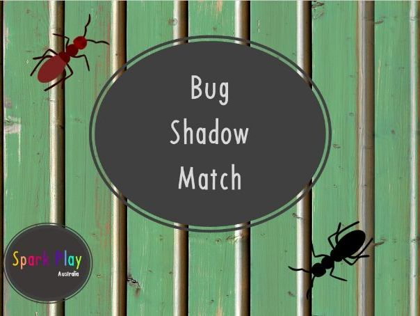 Bug Shadow Match