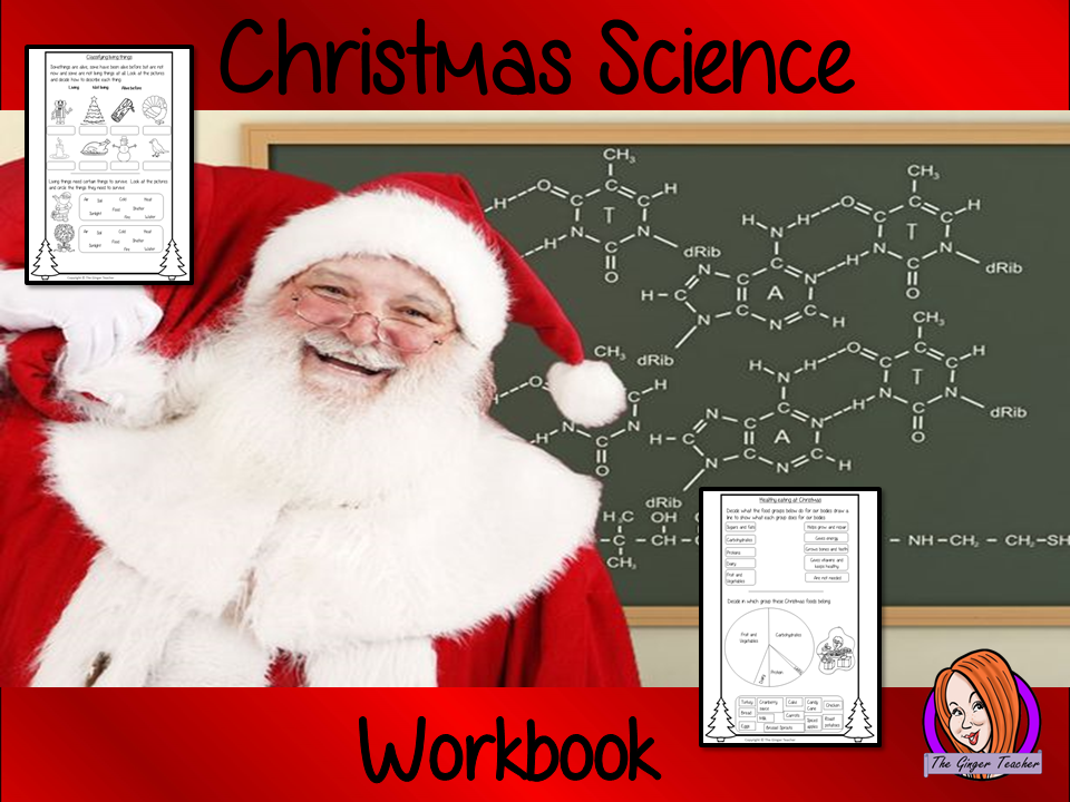 Christmas Science Workbook