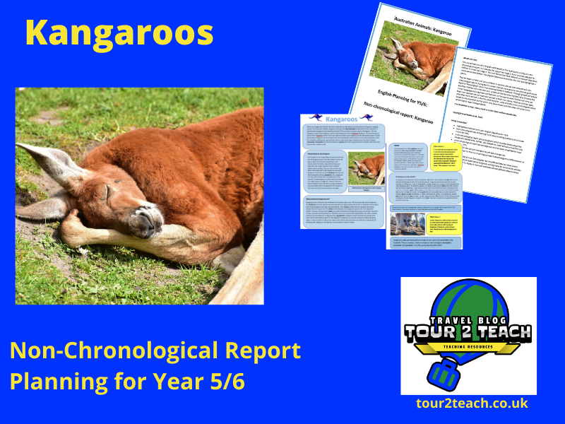 Kangaroo Non-Chronological Report Planning for Year 5/6