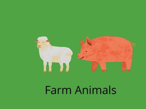 Farm Animals Counting-Worksheet