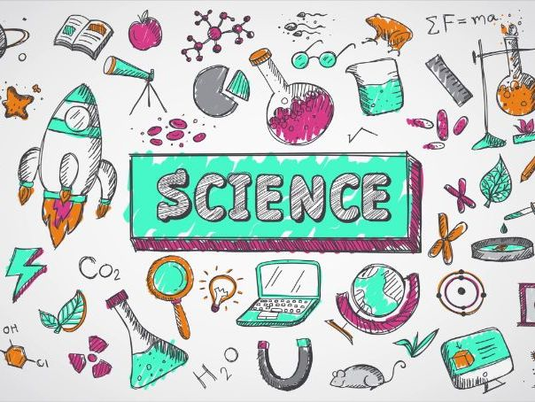 Year 7/8 Science Booklets