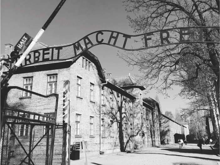 The Holocaust and the Persecution of Jews