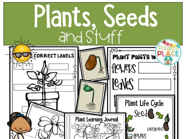Plants - A Science Unit