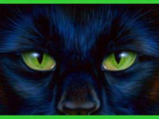 Macavity The Mystery Cat Classic Poetry Comprehension Activity Differentiated