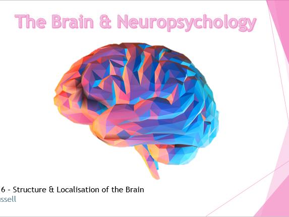 AQA GCSE Psychology (9-1)  Brain & Neuropsychology (6 subtopics)