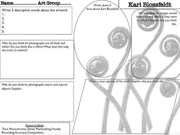 Karl Blossfeldt Art Analysis Work Sheet