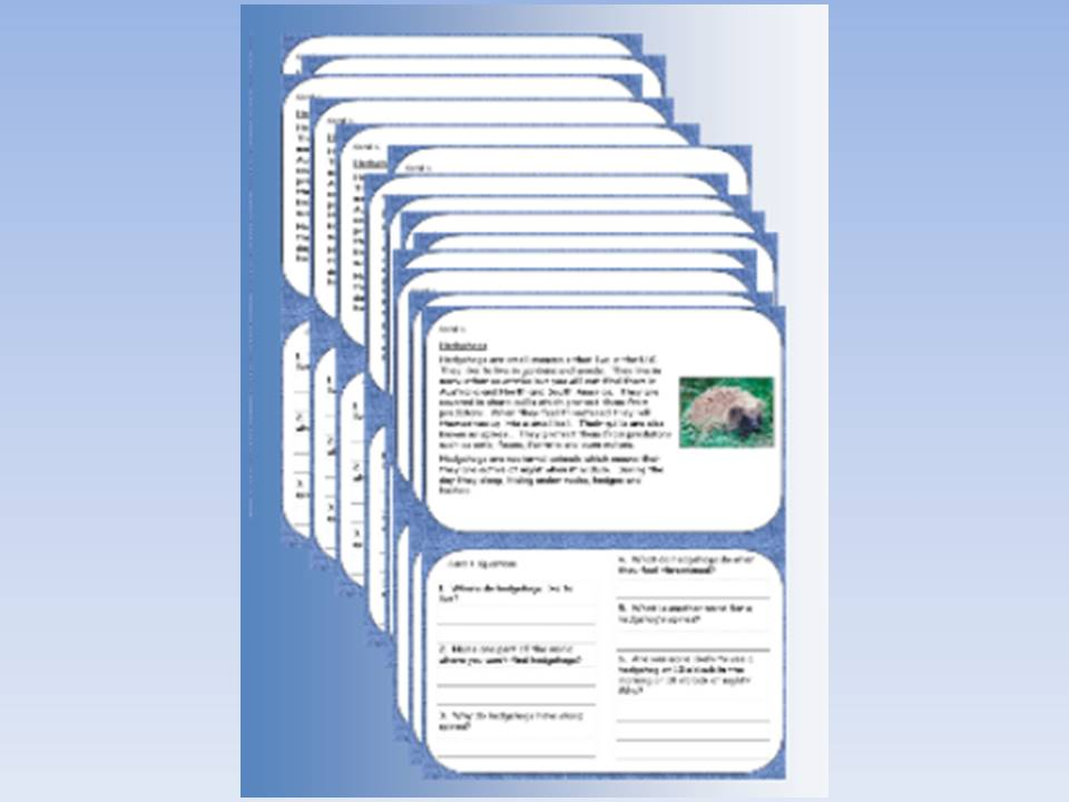 Lower KS2 Reading Comprehension Cards based on Hedgehogs