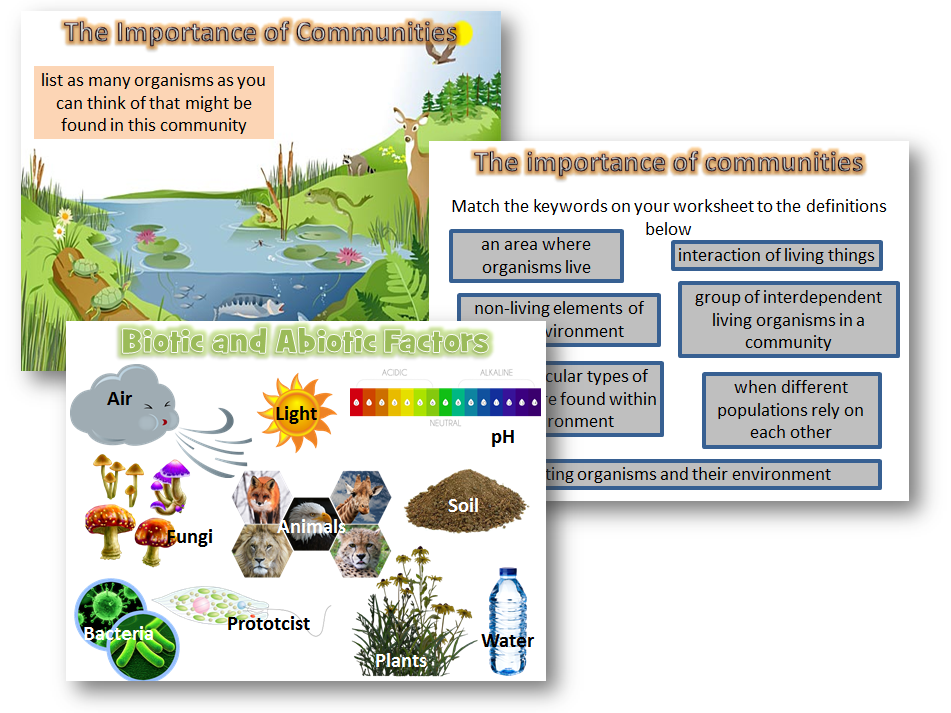 Organising ecosystems - Biotic and Abiotic factors AQA biology 2016