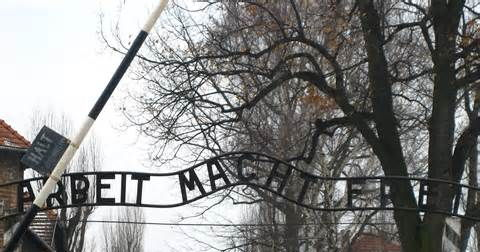 The Holocaust-Concentration Camps