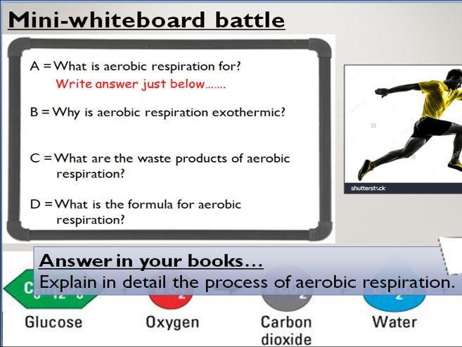 KS4 B9.1 Aerorobic Respiration
