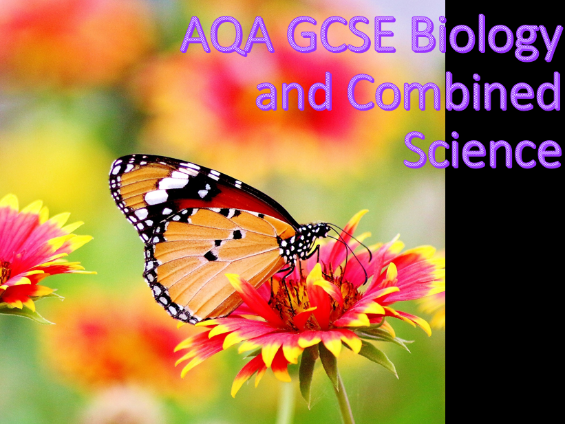AQA B9.1 Introduction to respiration